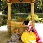 O que acontece com as moedas jogadas nos lagos e fontes dos parques do Complexo Disney?