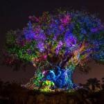 Curiosidades por trás da árvore da vida